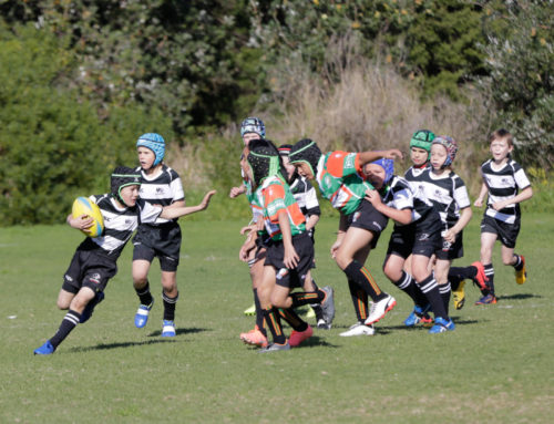 Action from the U10s game against Penrith
